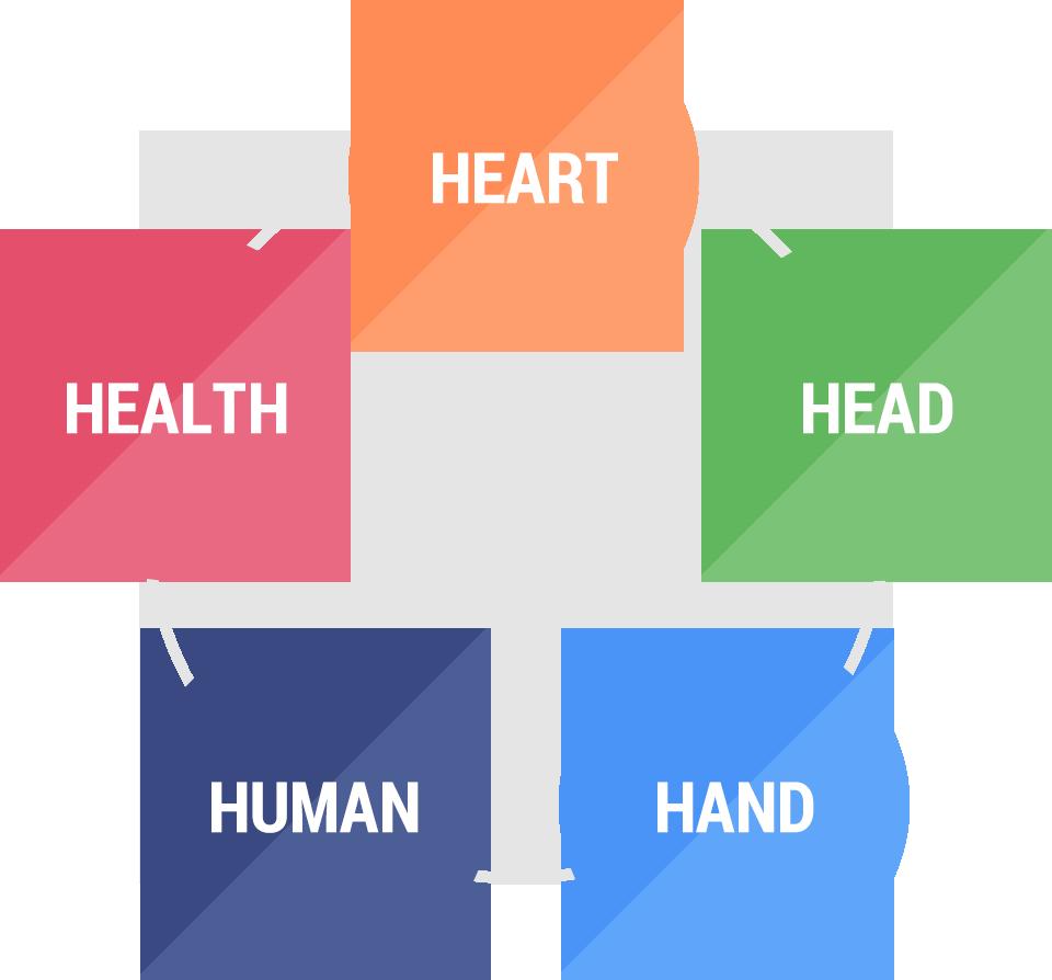 介護のプロが身につけるべき5つのH